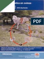 INTA Fasciola hepática en ovinos