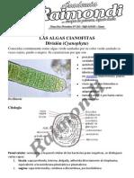 Las+Algas+Cianofitas