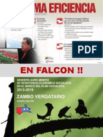 Programa Zambo Vergatario-completa