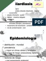 Parasitos Diarrea