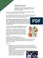 psicimedicina.docx