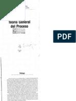 Teoria General Del Proceso Tomo I - Angelina Ferreyra de de La Rua