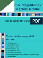 Malformatiile AP. Genital