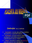 Placenta Jos Inserata