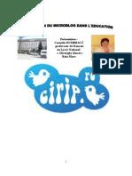 l`Utilisation Du Microblog..