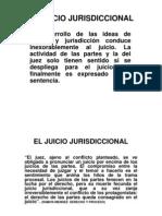 Juicio Jurisdiccional