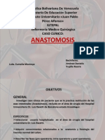 Anastomosis 2007