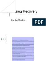 Casing Recovery