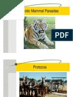 Exotic Animal Parasites