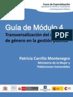 Guia Modulo4