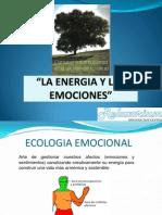 Energia y Emociones