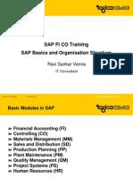 Sap Basics and Organisation Structure