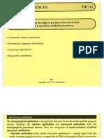 Anatomic Sciences - Pdl G