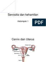 Servisitis Dan Kehamilan