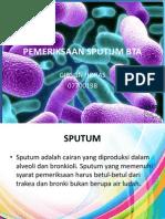 Pemeriksaan Sputum Bta