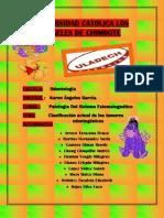 If - III Unidad - Mapa - Pato