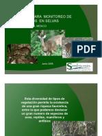 Monitoreo de Mamíferos en Selvas