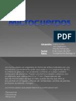 Microcuerpos Dise