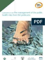Dangers of Doctor Fish