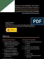 OECC.pdf