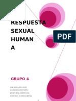 Grupo Cuatro Respuexta Social Humana