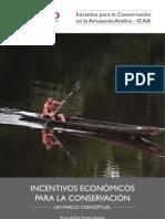 Incentivos Económicos Marco Conceptual 2012