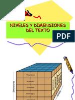 Clase3 Niveles y Dimensiones Del Texto