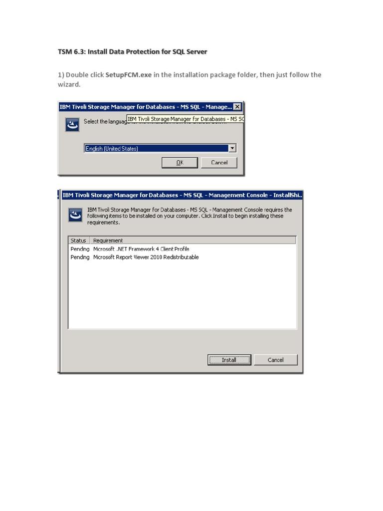 tdp sql v63 | Backup | Microsoft Sql Server