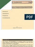 Microbiology Pathology Fungi