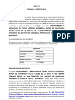 Anexo 3. Tdr.iii.Convoc