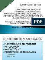 SUSTENTACIÓN DE TESIS - WULFREDO