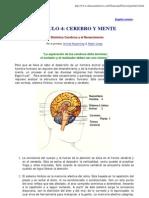 Psicologia - Cerebro Y Mente