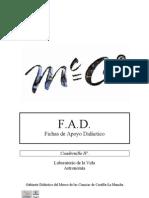 Cuadernillo Fad IV