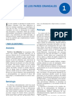 PATOLOGIA NERVIOS CRANEALES