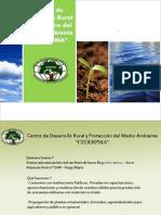 CURSO PROPAGACION DE PLANTAS ORNAMENTALES  N°1