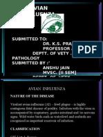 Dr Bhavesh Zapadia-avian infflueza