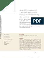 ARN Neural Mechanisms of Addiction