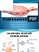 GASES SANGUNEOS Presentacion Final