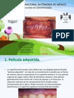 Biopelicula Iveth 2 (1)