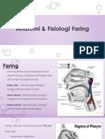 Anatomi & Fisiologi Faring
