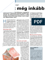 Haszon Magazin