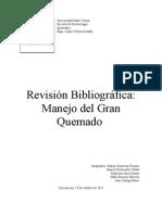 Resumen Revision Sistematica