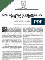 Ontogenia y Filogenia Del Basilisco - Gustavo Bueno