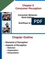 CB Perceptions Module 2
