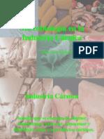 Microbiologia en La Industria Carnica
