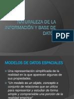 Naturaleza de la información y base de datos Trabajo Final