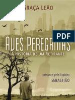 eBook - Eme - Aves Peregrinas