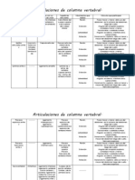 Articulaciones de Columna Vertebral (2)