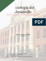 Sociologia del desarrollo Raúl Porras