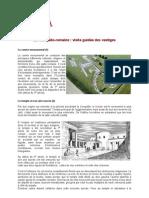 12017879960 PDF Visite Ville Gallo-romaine